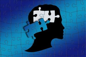 Jigsaw puzzle of the mind